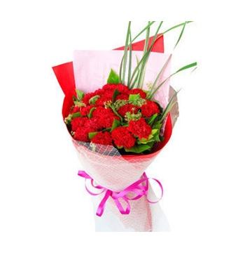 24 Red Carnations with Greens Delivery to Manila Philippines