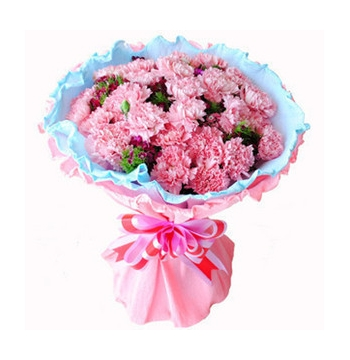 24 Pink Carnations with Greens Send to Manila Philippines