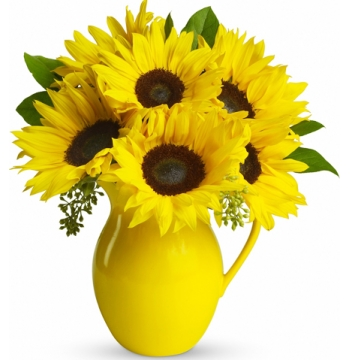 send eight sunflower in vase to manila