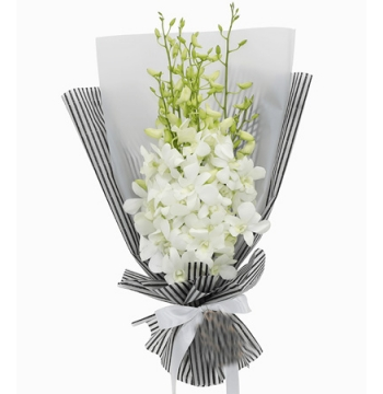 12 White Orchids in a Bouquet